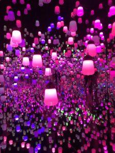 ランプの森、ピンクの光。